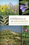 Wildflowers of the Adirondacks by Donald J. Leopold and Lytton John Musselman