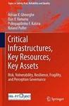 Critical Infrastructures, Key Resources, Key Assets: Risk, Vulnerability, Resilience, Fragility, and Perception Governance by Adrian V. Gheorghe, Dan V. Vamanu, Polinpapilinho F. Katina, and Poland Pulfer