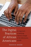 The Digital Practices of African Americans: An Approach to Studying Cultural Change in the Information Society